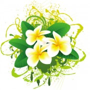 Link toFlowers bloom free vector 01
