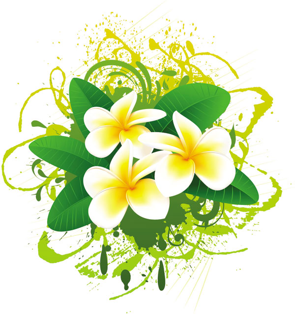 Flower Images Free flowers bloom free vector
