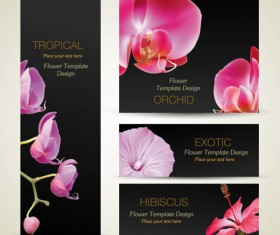 with Flowers cards vector template 01