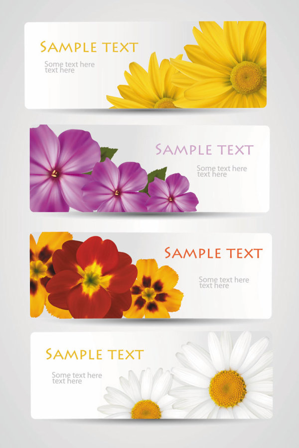 with Flowers cards vector template 02