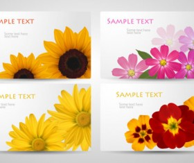 with Flowers cards vector template 03