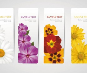 with Flowers cards vector template 04