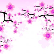 Link toJapan cherry blossoms free vector 02