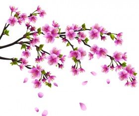 Japan Cherry Blossoms free vector 03
