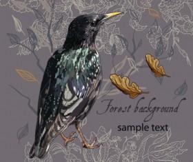 forest birds vector background 04