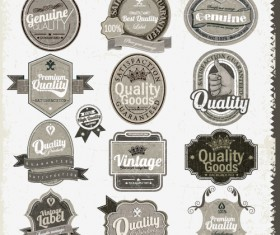 Set of Vintage badges & labels vector 02