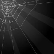Link toSpiderweb design elements vector 01