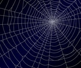 spiderweb design elements vector 02