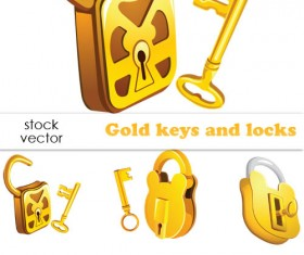 Set of Gold color keys & locks vector
