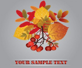 Fall leaves vector background 01