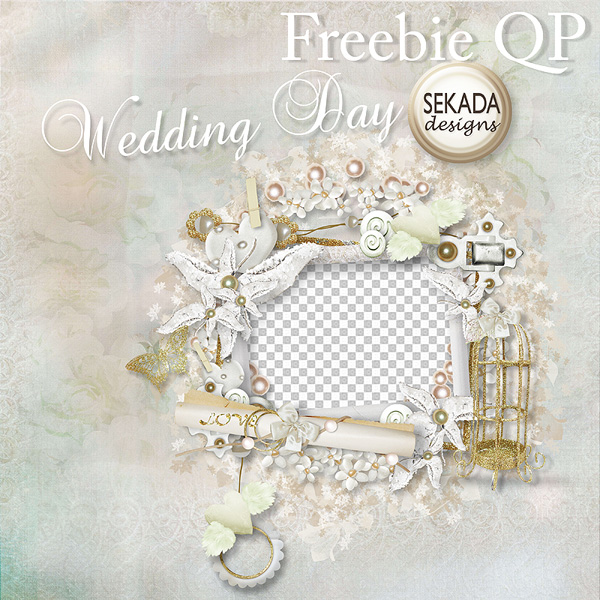 Wedding Photo frame png background 01