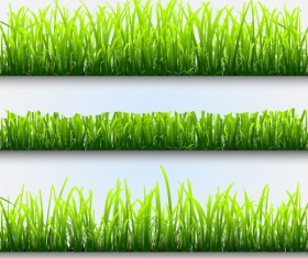 Grass and Flowers Decoration elements vector 02