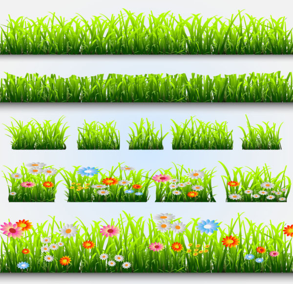 Grass and Flowers Decoration elements vector 04
