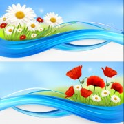 Link toVivid chrysanthemum vector background 01
