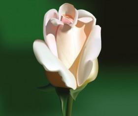 lifelike with Flowers vector set 01