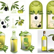 Link toSet of olive oil label stickers vector 05
