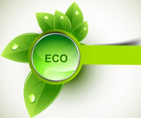 Eco design elements vector cards 03