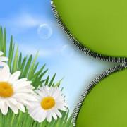 Link toSpring green grass background vector 05