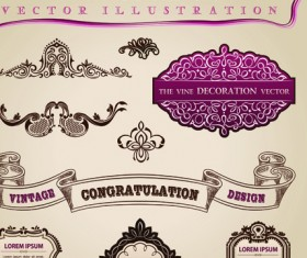 Set of Calligraphic vintage Borders and label vector 05