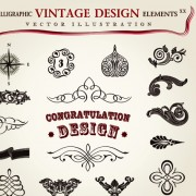 Link toSet of calligraphic vintage borders and label vector 08