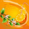 Elements of Lemon and flowers vector 03