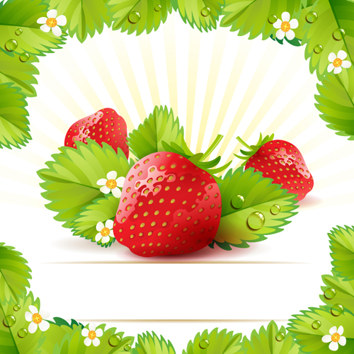 Fresh Strawberry vector 03