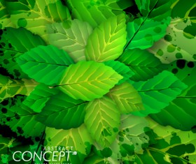 Green leaves design elements cards vector 01