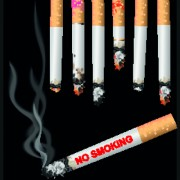 Link toSet of no smoking design elements vector 01