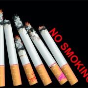 Link toSet of no smoking design elements vector 02