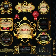 Link toSet of royal gold banner and luxury label vector 04