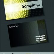 Link toSet of elegant business cards vector 04