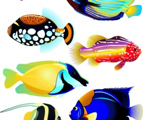 Set of Various Fish vector 01