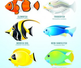 Set of Various Fish vector 05