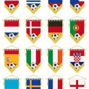 Link toFootball flag elements vector set 02