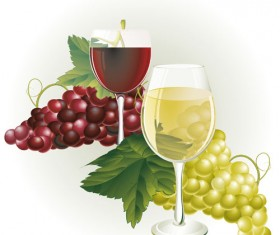 Grapes and grape wine elements vector 05