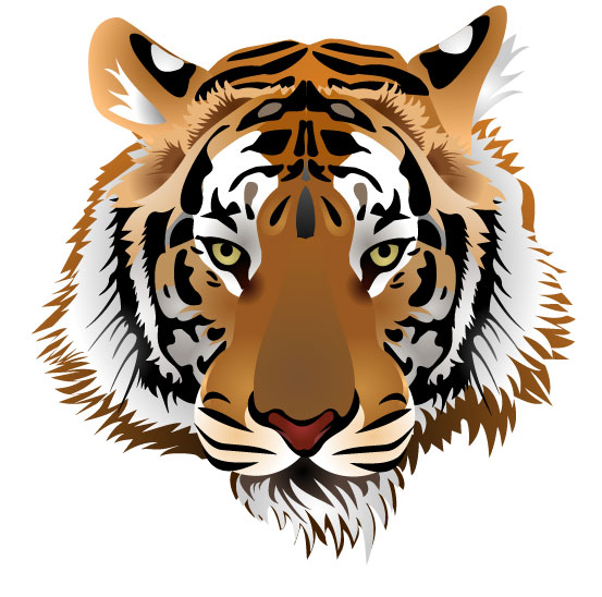 set of tiger vector picture art 03 free download