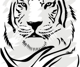 Set of Tiger vector picture art 06