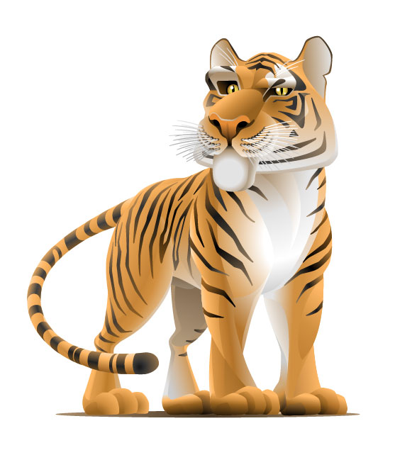 Set of Tiger vector picture art 07