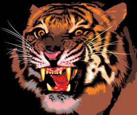Set of Tiger vector picture art 09