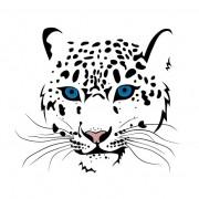 Link toSet of cheetah vector picture art 13