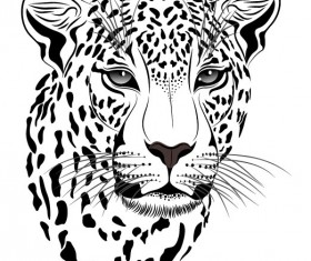 Set of Cheetah vector picture art 14