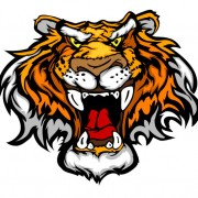 Link toSet of tiger vector picture art 17