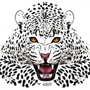 Link toSet of tiger vector picture art 18