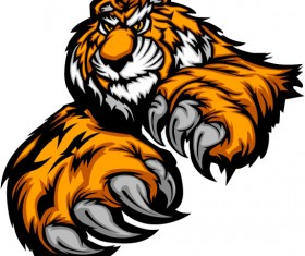 Set of Tiger vector picture art 19
