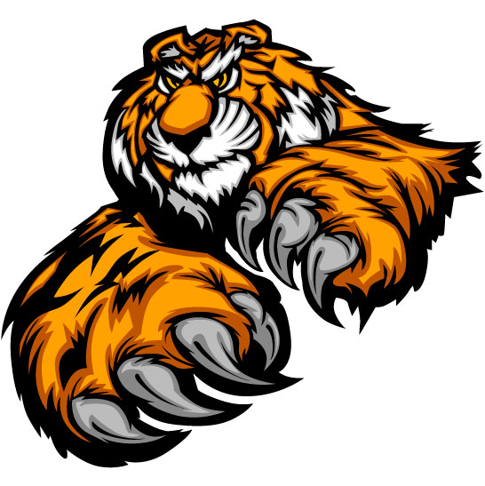 set of tiger vector picture art 19 free download
