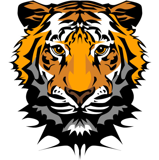 set of tiger vector picture art 20 free download