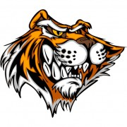 Link toSet of tiger vector picture art 21