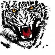 Link toSet of tiger vector picture art 27