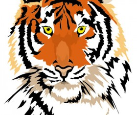 Set of Tiger vector picture art 01