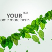Link toGreen leave flyer and cover brochure background vector 01